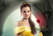 Beauty & The Belle
