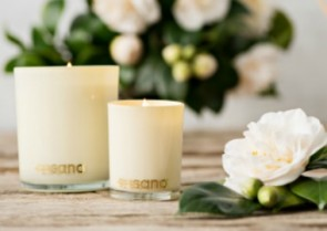 Why You NEED to Switch to SOY Candles ASAP!