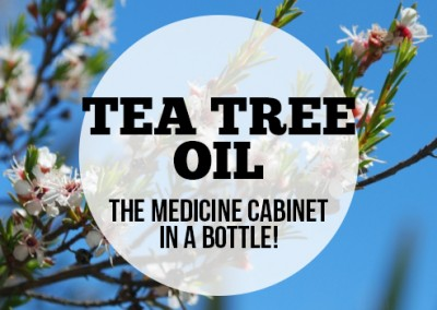 Tea Tree Oil – Australia's Medicine Cabinet in a Bottle