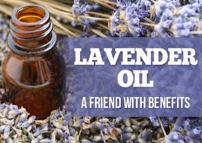 Lavender Oil – the Unexpected Qualities of a Friend with Benefits
