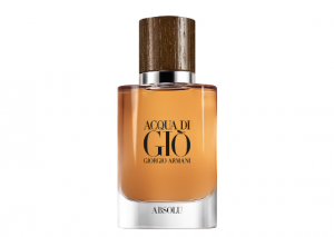 Armani Acqua Di Gio Homme Absolu Reviews