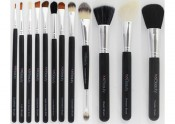xoBeauty 12 piece Brush Set