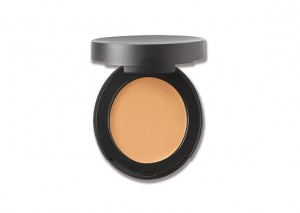 bareMinerals Correcting Concealer Review