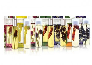Linden Leaves Body Oil (all varieties) Review